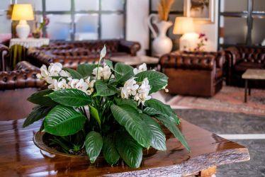 hotel-bristol-4-stelle-bellaria-con-sala-relax
