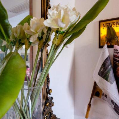 hotel-bristol-4-stelle-bellaria-quotidiani-sempre-disponibili